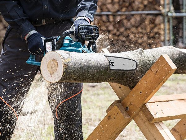 Chainsaw Training Courses